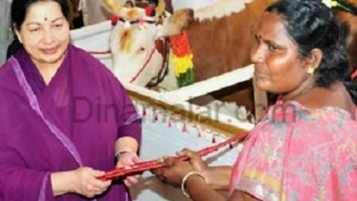 தமிழக அரசு வழங்கிய  இலவச கறவை மாடுகள் மூலம் தினசரி 80 ஆயிரம் லிட்டர் பால் கொள்முதல்