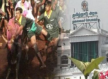 முதலமைச்சர் ஜெயலலிதாவின் தொடர் முயற்சிக்கு கிடைத்தது வெற்றி:   ஜல்லிக்கட்டு நடத்த மத்திய அரசு அனுமதி