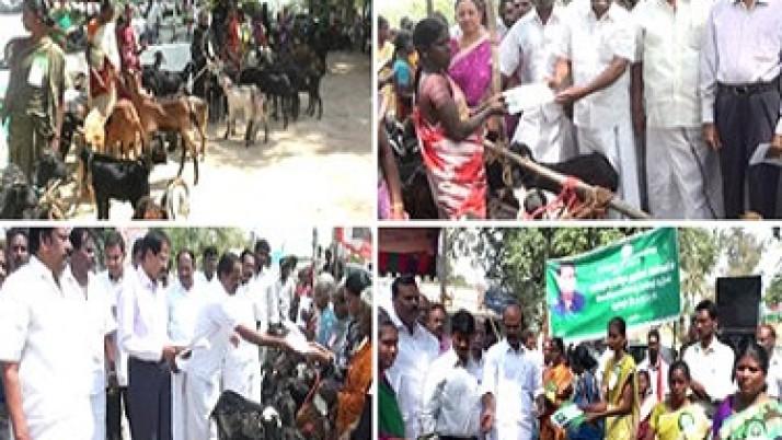 மாநிலம் முழுவதும் முதலமைச்சர் ஜெயலலிதா உத்தரவின்பேரில்  நலத்திட்ட உதவிகள் தொடர்ந்து வழங்கப்பட்டு வருகின்றன