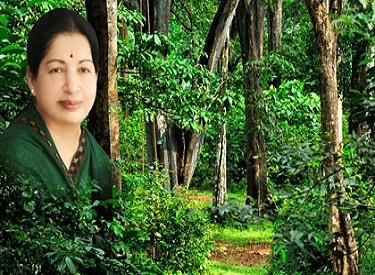 முதலமைச்சர் ஜெயலலிதா வின் முனைப்பான நடவடிக்கைகளால், இந்தியாவிலேயே அதிக வனப்பரப்புக் கொண்ட மாநிலங்களில் தமிழகம் முதலிடம் பிடித்து சாதனை